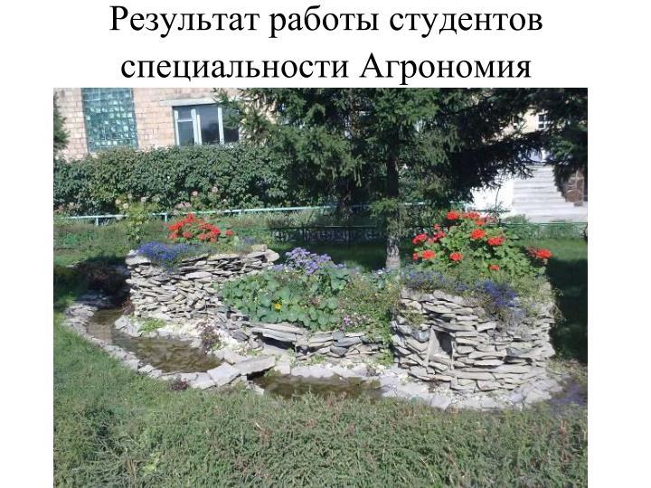Результат работы студентов специальности Агрономия