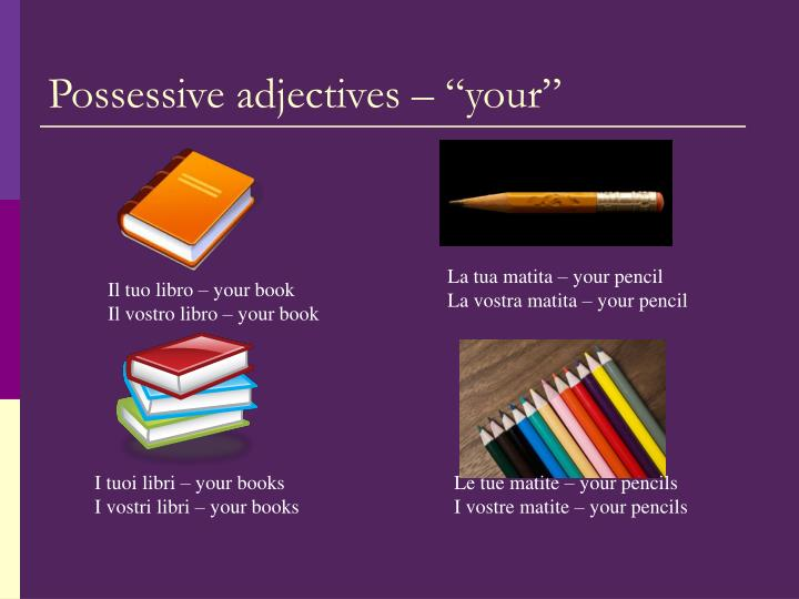 Possessive adjectives your
