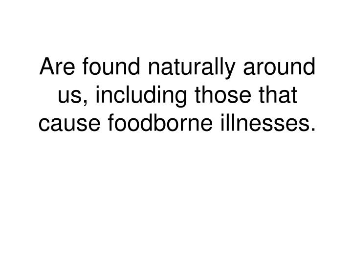 Are found naturally around us, including those that cause foodborne illnesses.