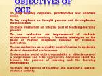 objectives of cce