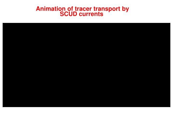 Animation of tracer transport by