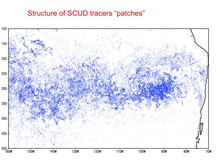 """Structure of SCUD tracers """"patches"""""""