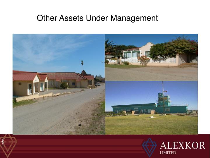 Other Assets Under Management