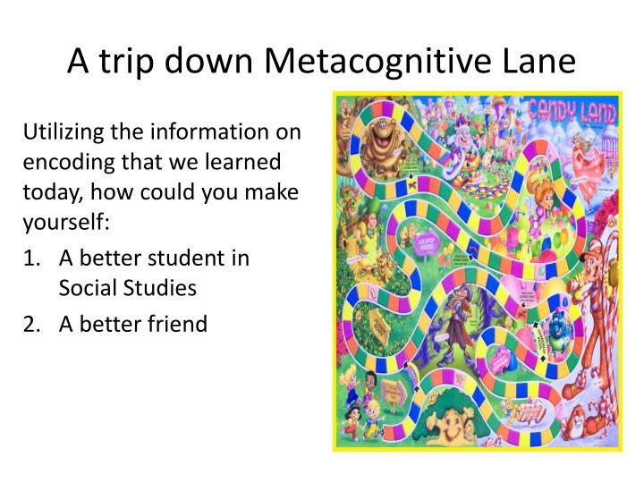 A trip down Metacognitive Lane
