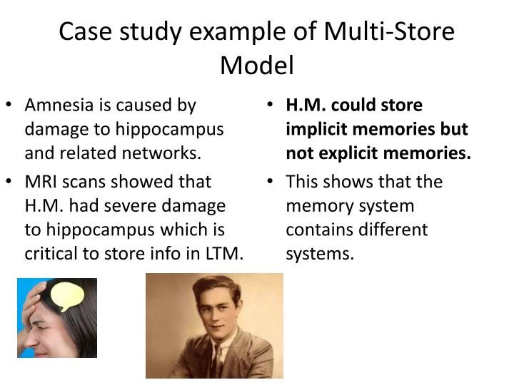 Case study example of Multi-Store Model