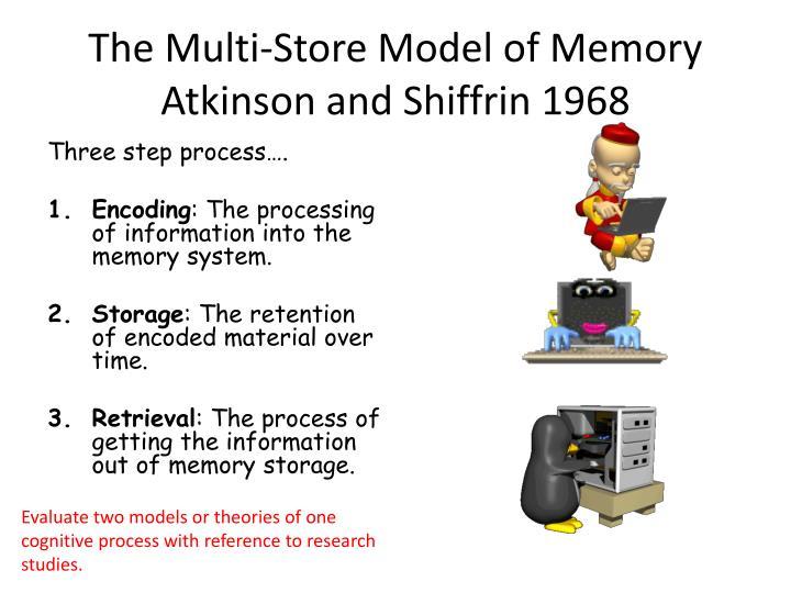 The Multi-Store Model of Memory