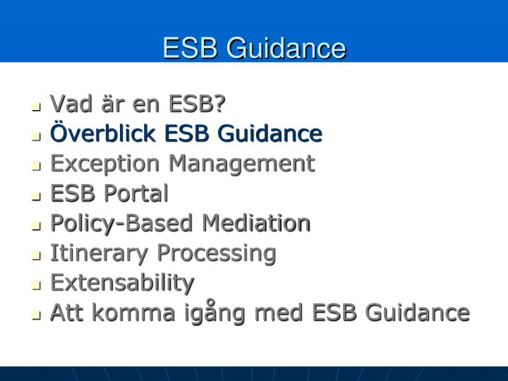ESB Guidance