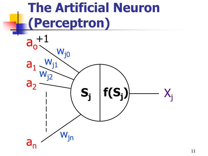 The Artificial Neuron (Perceptron)