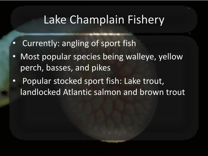 Lake Champlain Fishery