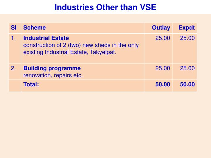 Industries Other than VSE