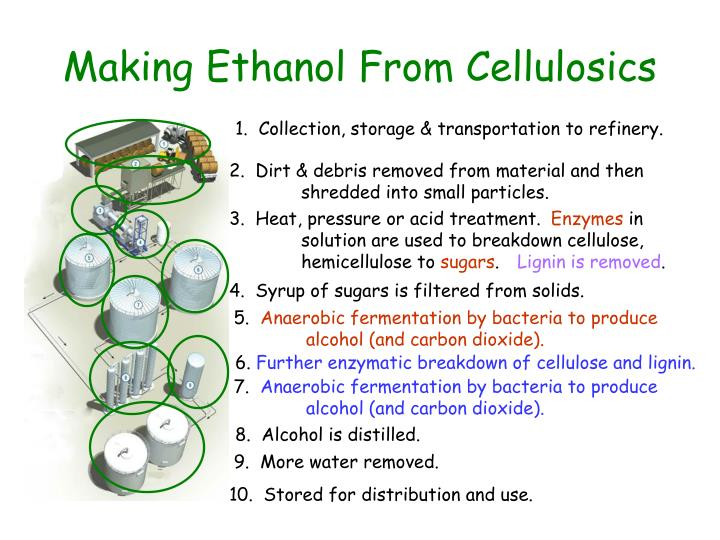 Making Ethanol From Cellulosics