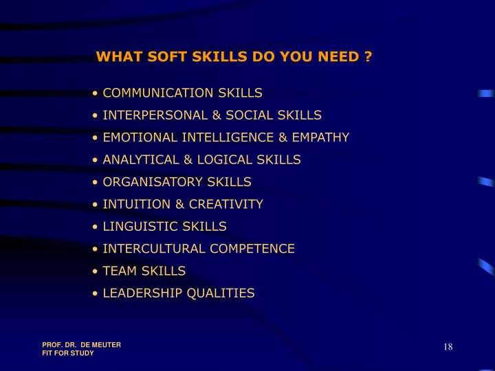 WHAT SOFT SKILLS DO YOU NEED ?