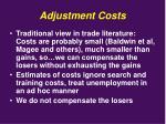 adjustment costs