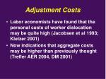 adjustment costs1