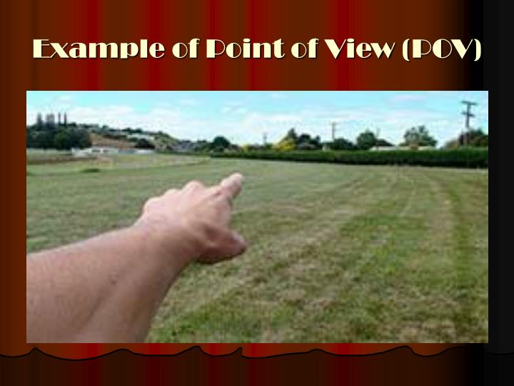 Example of Point of View (POV)