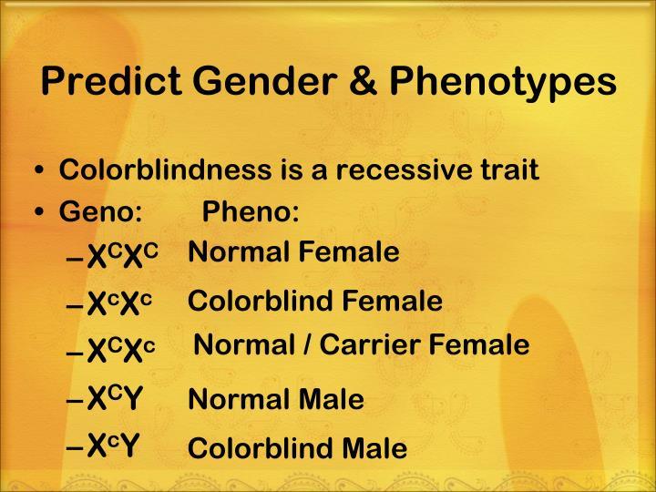 Predict Gender & Phenotypes