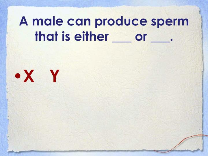 A male can produce sperm that is either ___ or ___.