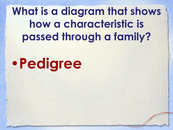 What is a diagram that shows how a characteristic is passed through a family?