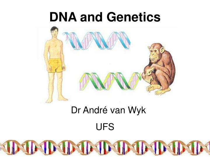 dna and genetics n.