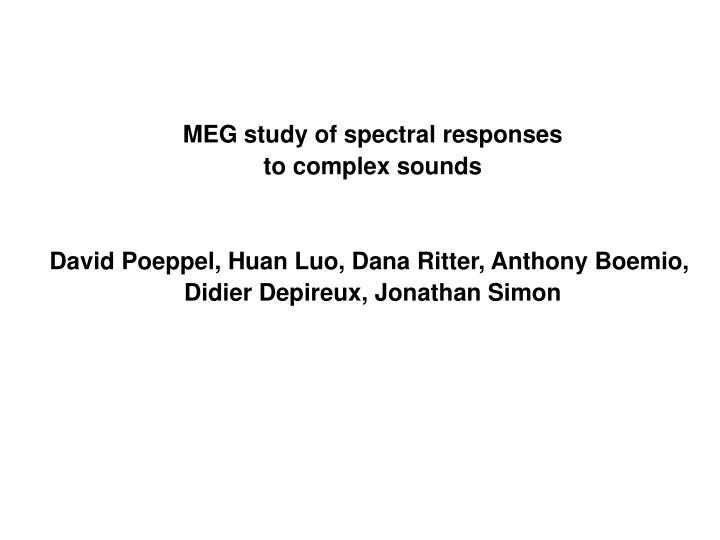 MEG study of spectral responses