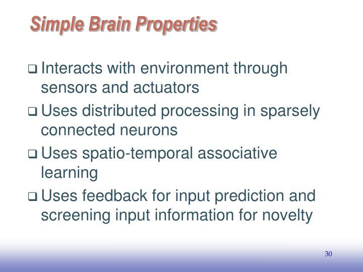 Simple Brain Properties