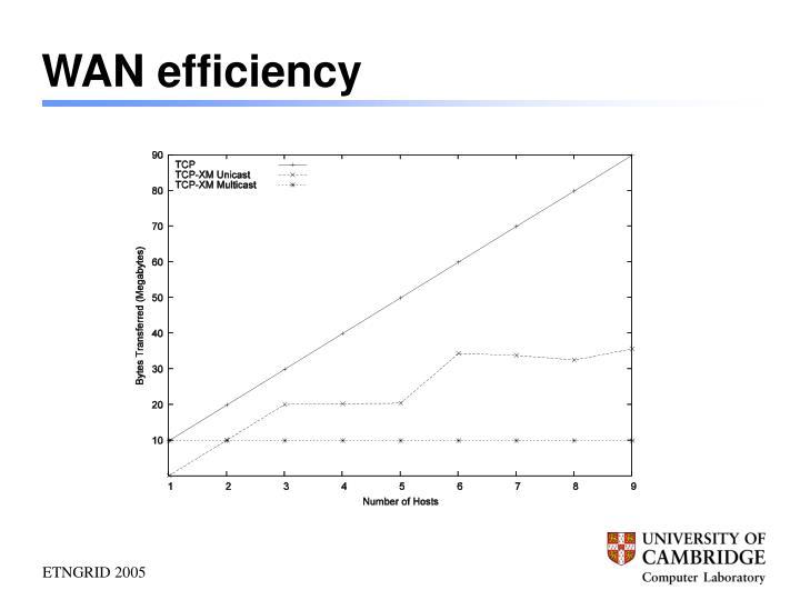 WAN efficiency