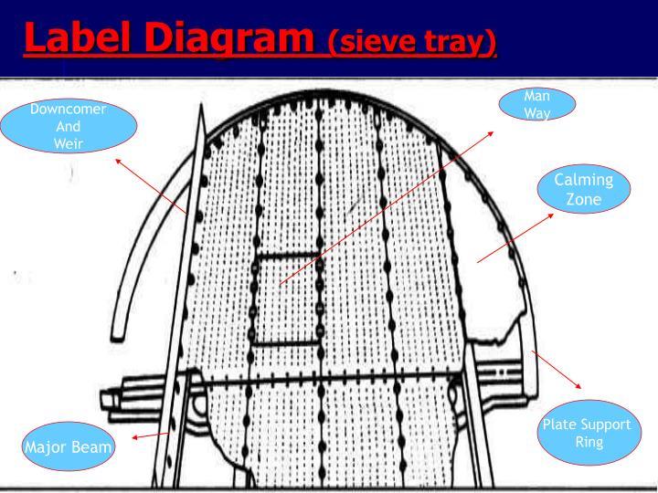 Label Diagram