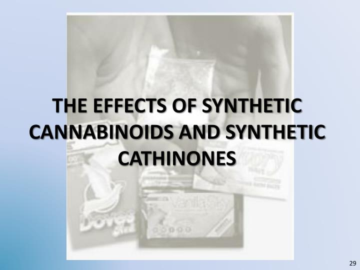 the Effects of synthetic cannabinoids and synthetic cathinones