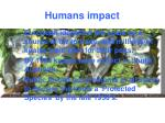 humans impact