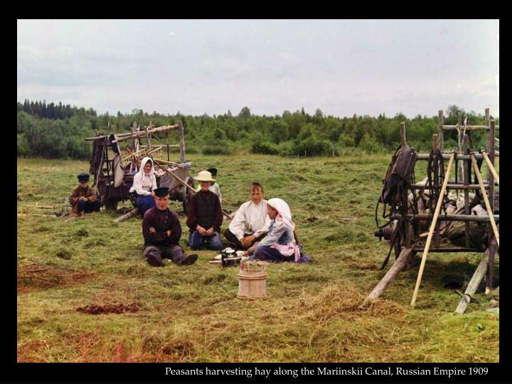 Peasants harvesting hay along the Mariinskii Canal, Russian Empire 1909