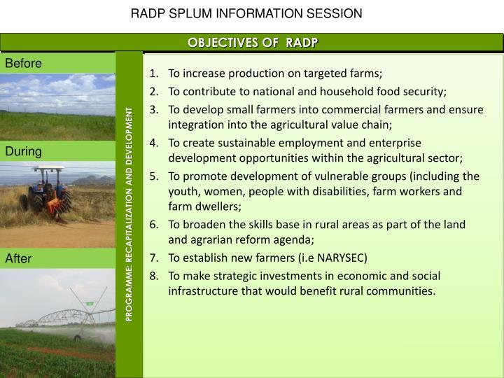 RADP SPLUM INFORMATION SESSION
