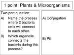 1 point plants microorganisms12