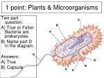 1 point plants microorganisms5