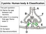 2 points human body classification4