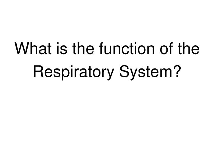 What is the function of the