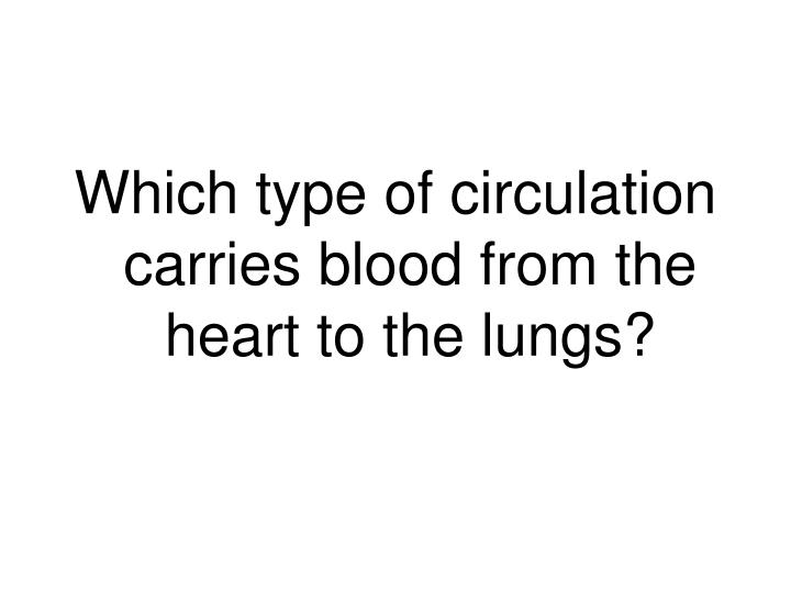 Which type of circulation carries blood from the heart to the lungs?