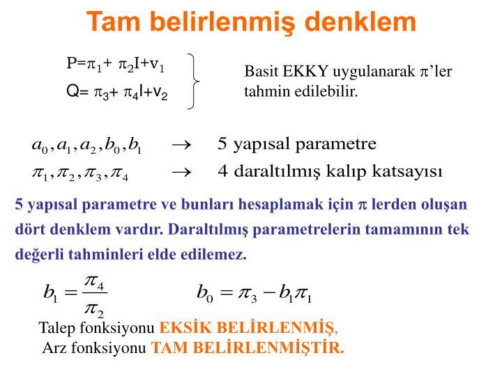 Tam belirlenmiş denklem
