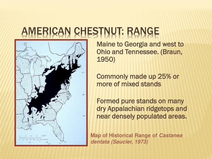 American Chestnut: Range