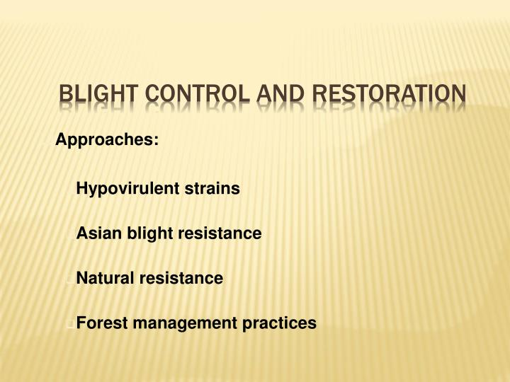 Blight Control and Restoration