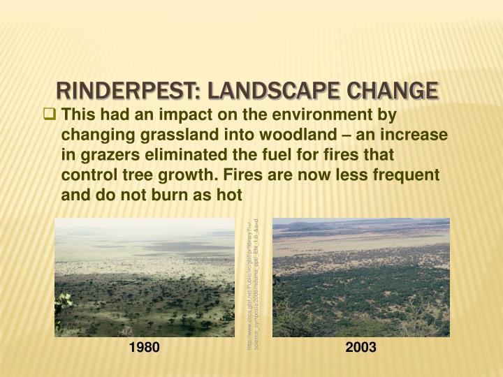 Rinderpest: Landscape Change