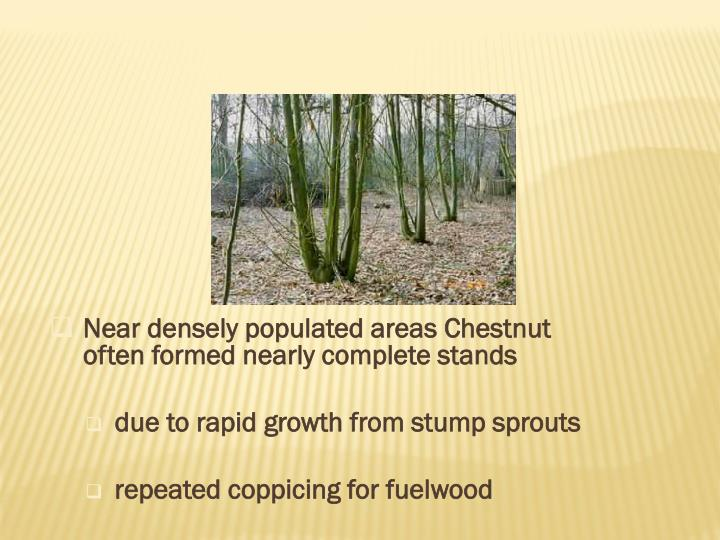 Near densely populated areas Chestnut