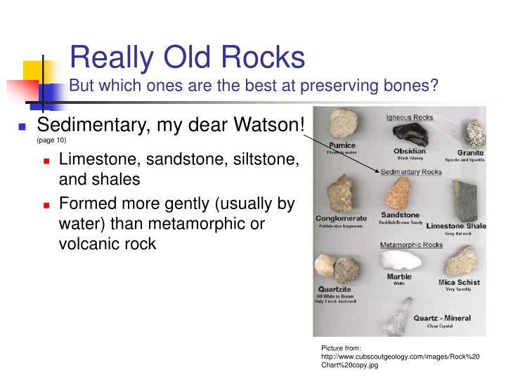Really old rocks but which ones are the best at preserving bones
