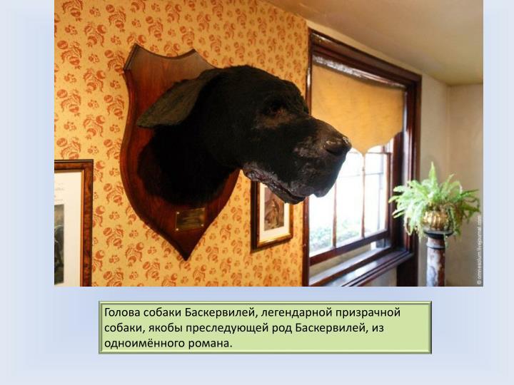 Голова собаки Баскервилей, легендарной призрачной собаки, якобы преследующей род Баскервилей, из одноимённого романа.