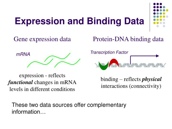 Protein-DNA binding data