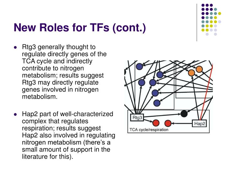 New Roles for TFs (cont.)