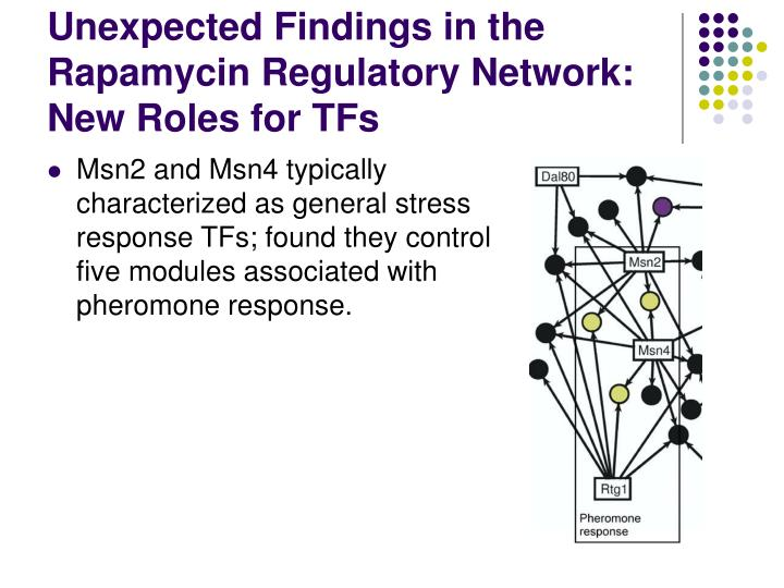 Unexpected Findings in the Rapamycin Regulatory Network: New Roles for TFs