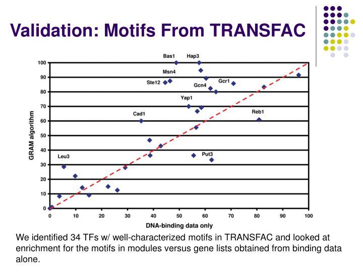Validation: Motifs From TRANSFAC