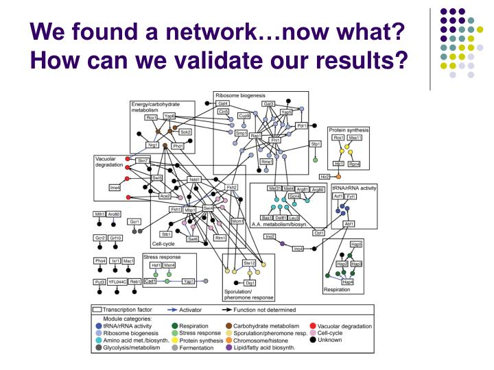 We found a network…now what?