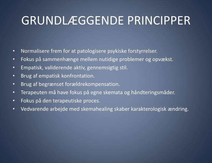 Grundl ggende principper