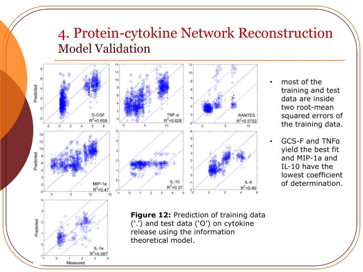 4. Protein-cytokine Network Reconstruction